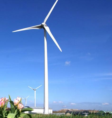 wind-4apr11-006w